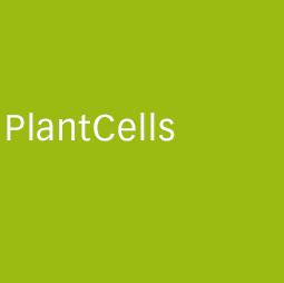 CCT_PlantCells