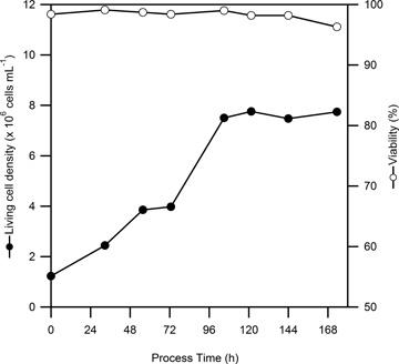 Graph_C3_P_1